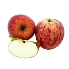 Gala Red Apples (5PCS/PKT)