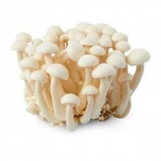 Shimeji Mushroom White (170g/pkt)