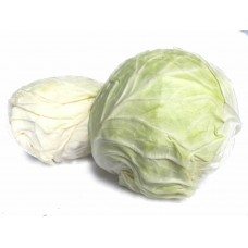 Round Cabbage (1PCS)