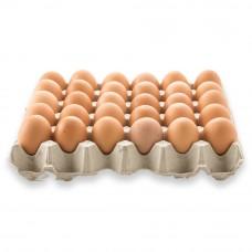 Egg/Telur Pucket (30PCS/TRAY)