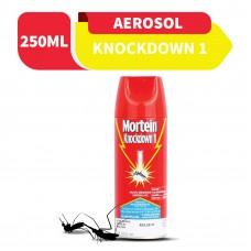 Mortein Knockdown Aerosol 250ml